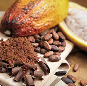 cocoa beans 2