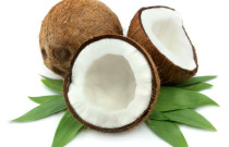 How is coconut oil microbial?