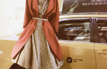 The Traveling Vintage Dress