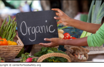 Debunked: How to Determine Organic and Non-organic Food