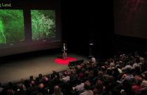 TED Talk: The Other Inconvenient Truth