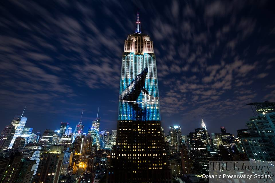 Empire State Building, Racing Extinction, Louie Psyhoyos, Conservation