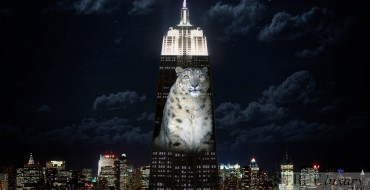 Projecting Change: The Groundbreaking Display on the Empire State Building