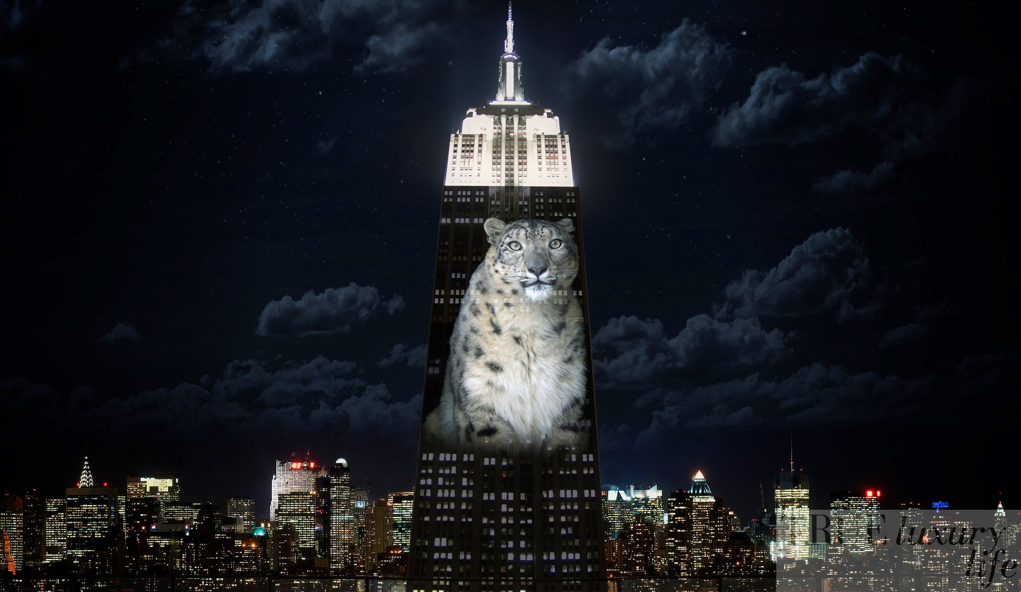 Racing Extinction, Louie Psyhoyos, Documentary, Empire State Building