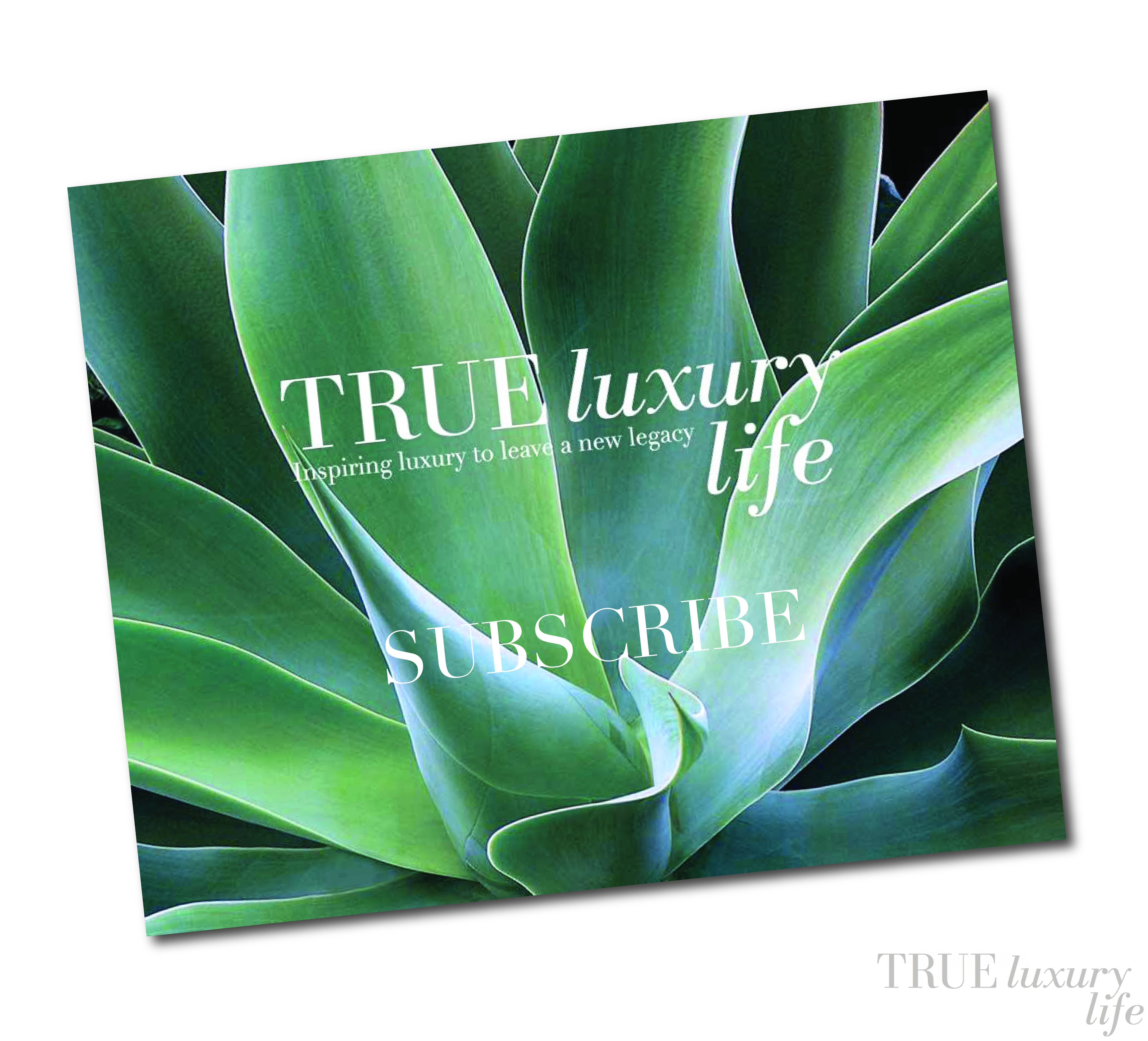 true luxury life subscribe banner-01